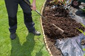 Spread Decorative Bark Mulch
