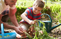 Gardening Fun for Kids