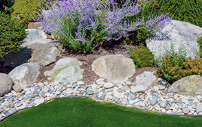 stones and rocks in garden