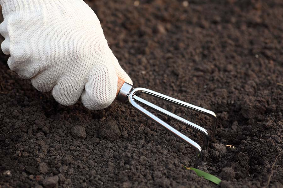 Weeding and cultivating soil