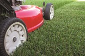 Hose under Mower