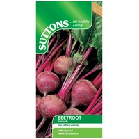 Suttons  Beetroot Boltardy Vegetable Seeds