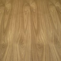 Finsa Fibranatur Veneered MDF Sheet 1220 x 2440mm - Walnut